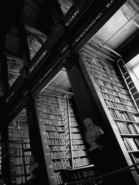 imposing library shelves